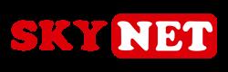 Sky_net.png